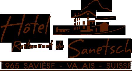 logo_sanetch_1