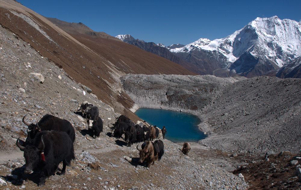 Une belle ambiance tibétaine au passage du Larkye.