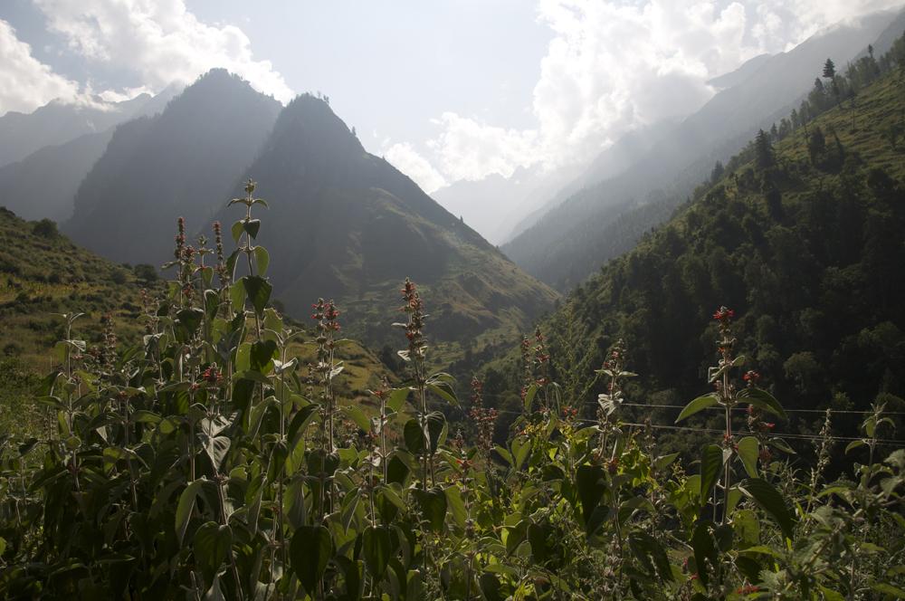 Une autre vallée s'ouvre devant nous, une invitation pour rejoindre un jour le Gorak Himal.
