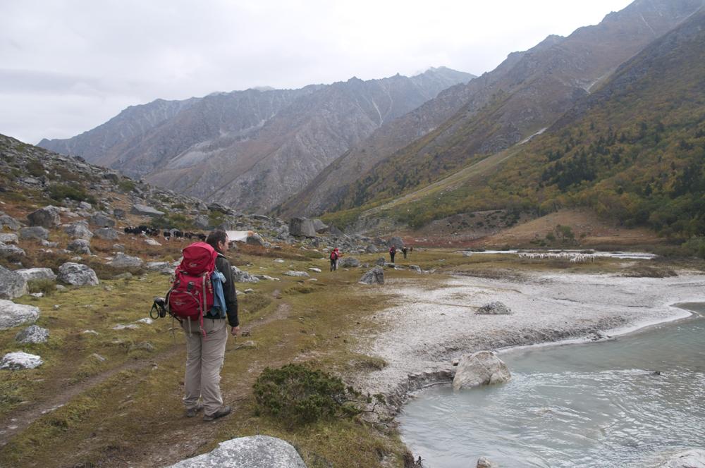 Le terrain devient d eplus en plus plat et facile. Nous voici définitivement dans les alpages d'altitude.