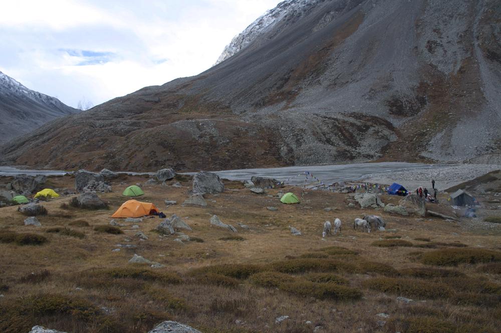Bishal Base Camp...