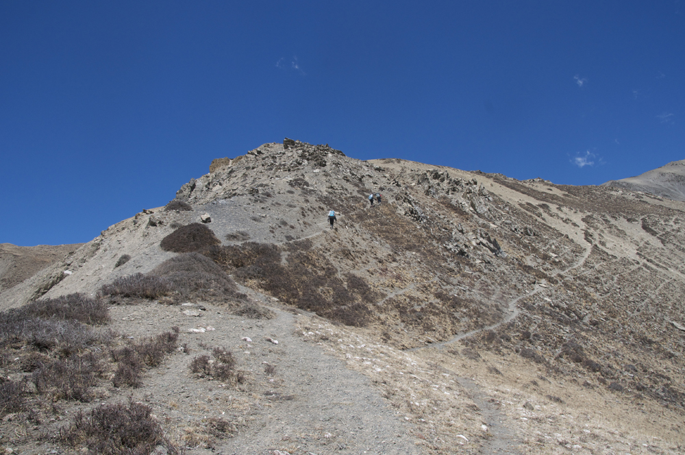 Un sentier bien marqué avec une petite arête, sans souci même avec des mules.