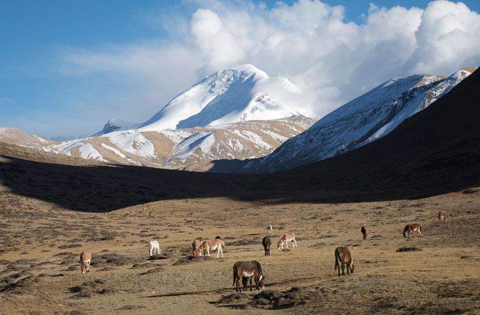 sommets du Népal avec Paulo Grobel