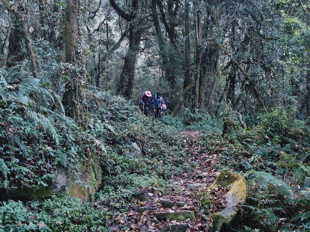 makalu base camp trek