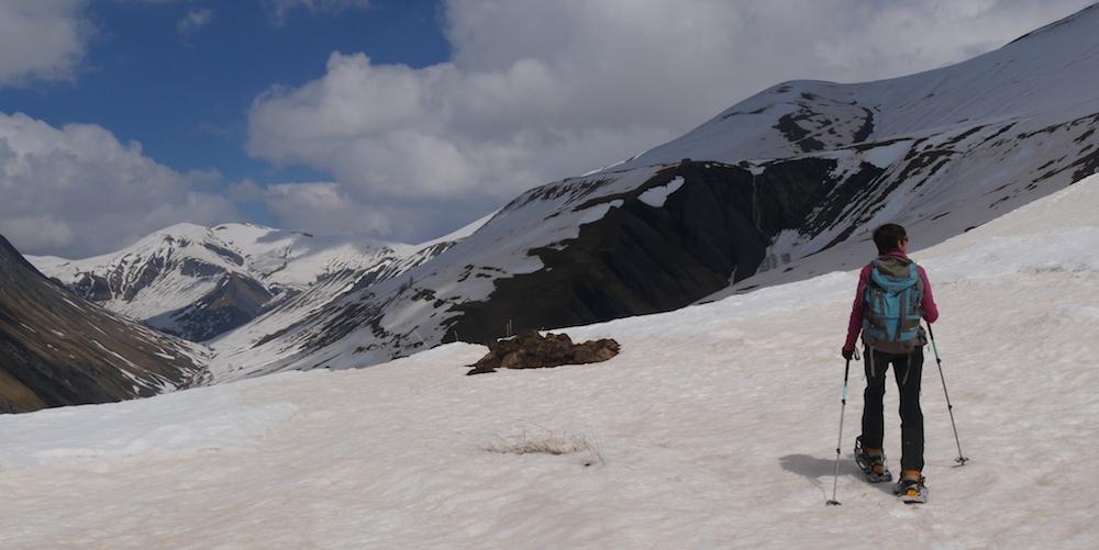 raid à ski du plateau d'emparis